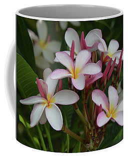 Coffee Mug featuring the photograph Pink And White Plumeria by Pamela Walton