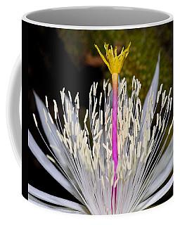 Pink And Yellow Pistil Coffee Mug