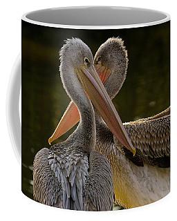 Pink-backed Pelican  Coffee Mug