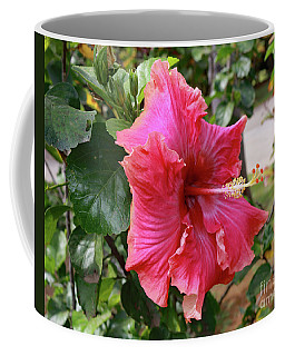 Pink Beauty Coffee Mug