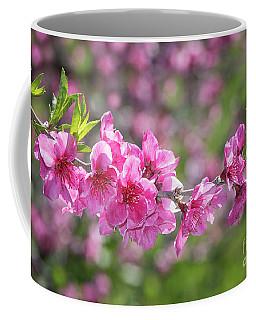 Pink Blossoms And Bokeh Background Coffee Mug