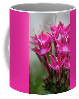 Pink Blossoms Coffee Mug