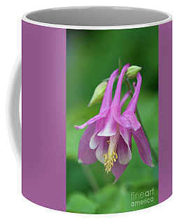 Pink Columbine - D010096 Coffee Mug
