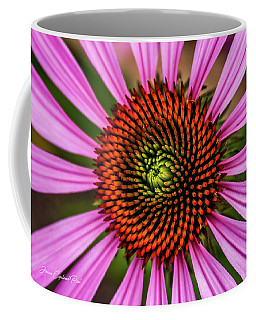 Coffee Mug featuring the photograph Pink Cornflower by Joann Copeland-Paul