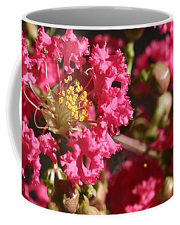 Coffee Mug featuring the photograph Pink Crepe Myrtle Flowers by Debi Dalio