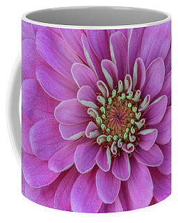 Coffee Mug featuring the photograph Pink Dahlia by Dale Kincaid