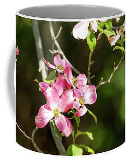 Pink Dogwood Coffee Mug