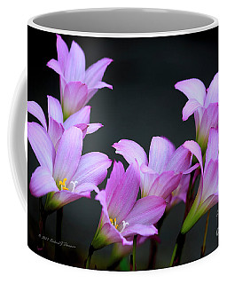 Coffee Mug featuring the photograph Pink Fairy Lilies by Richard J Thompson