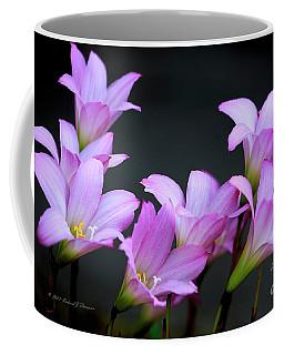 Pink Fairy Lilies Coffee Mug
