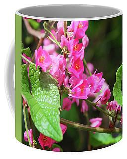 Coffee Mug featuring the photograph Pink Flowering Vine3 by Megan Dirsa-DuBois