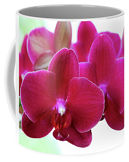 Coffee Mug featuring the photograph Red Orchid by Melinda Blackman