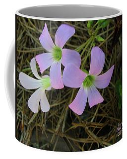 Pink Glow Coffee Mug by Donna Brown