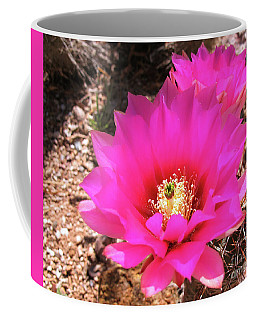 Pink Hedgehog Flower Coffee Mug