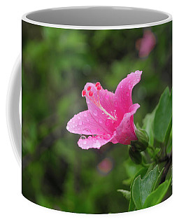 Pink Hibiscus Coffee Mug by Michelle Meenawong