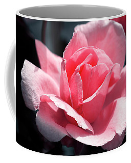 Coffee Mug featuring the photograph Pink In Light And Shadow by Rebecca Davis
