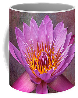 Coffee Mug featuring the photograph Pink Lady by Judy Vincent