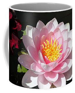 Coffee Mug featuring the photograph Pink Lady by M Diane Bonaparte