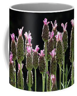 Pink Lavender Coffee Mug