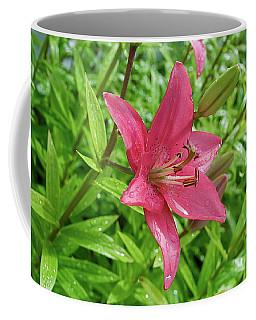 Pink Lily Flowers By Tamara Sushko  Coffee Mug