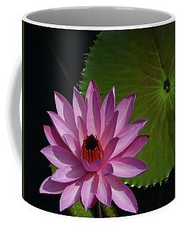 Pink Lotus Coffee Mug by Evelyn Tambour