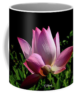 Pink Lotus  Coffee Mug