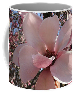 Pink Magnolia In Full Bloom Coffee Mug by Dora Sofia Caputo Photographic Art and Design