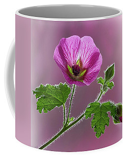 Pink Mallow Flower Coffee Mug