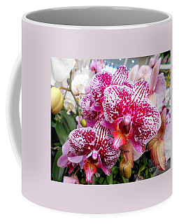 Pink Moth Orchids Coffee Mug