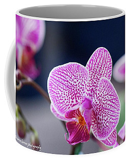 Pink Orchid Coffee Mug by Nance Larson