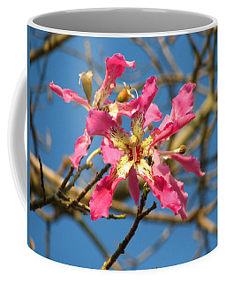 Pink Orchid Tree Coffee Mug by Carla Parris