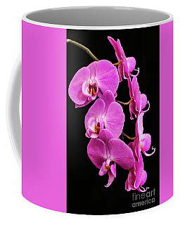 Pink Orchid With Black Background Coffee Mug