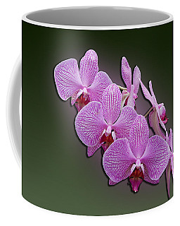 Coffee Mug featuring the photograph Pink Orchids by John Haldane