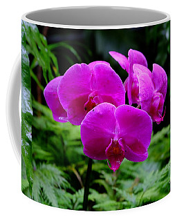 Pink Orchids Coffee Mug by Mini Arora