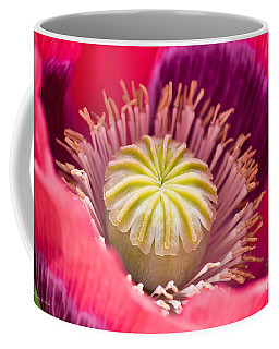 Pink Poppy Flower Coffee Mug