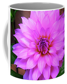 Pink Purple Dahlia Flower Coffee Mug