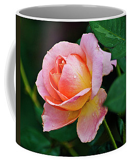 Coffee Mug featuring the photograph Pink Rose by Bill Barber