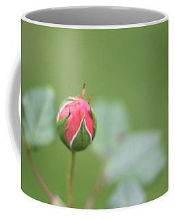 Coffee Mug featuring the photograph Pink Rose Bud by Kelly Hazel