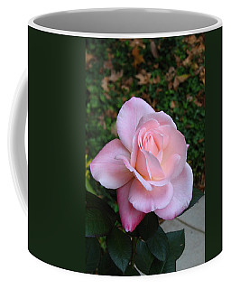 Coffee Mug featuring the photograph Pink Rose by Carla Parris