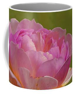 Pink Rose #d3 Coffee Mug