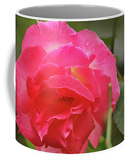 Coffee Mug featuring the photograph Pink Rose by Kelly Hazel