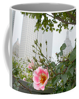 Pink Rose Of Tulsa Coffee Mug