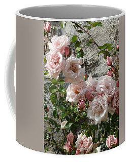 Coffee Mug featuring the photograph Pink Roses by Phil Banks