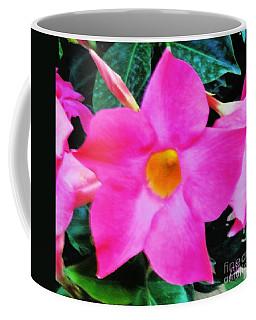 Pink Star Flower Coffee Mug by Marsha Heiken