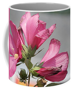 Pink Trio Coffee Mug