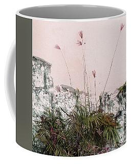 Pink Wall Coffee Mug by Ian  MacDonald