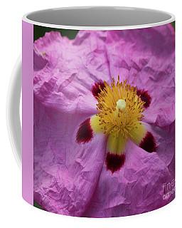 Pink Wrinkles Coffee Mug