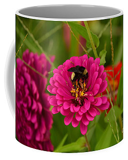 Pink Zinnia And Bee Coffee Mug
