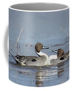 Pintails Coffee Mug