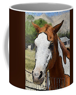 Coffee Mug featuring the photograph Pinto In The Pasture Portrait  by Barbara Snyder