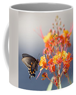 Coffee Mug featuring the photograph Pipevine Swallowtail by Dan McManus